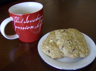 Stay Healthy Oat Protein Cookies